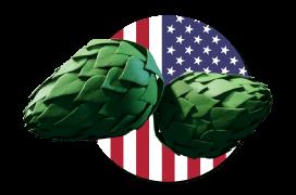 US flag logo with hops
